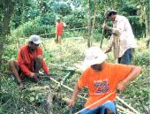 苗を植える際に使う杭の準備